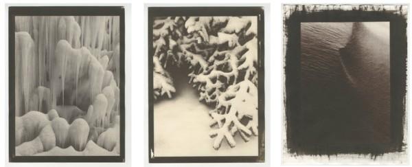Winter Kallitypes